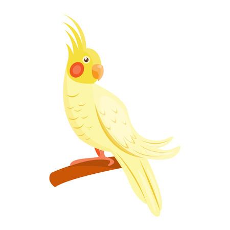 guacamaya caricatura: loro de la historieta animal salvaje. Tropical de la pluma del loro zoológico de aves, fauna tropical Macaw Ara volar. Ilustración de dibujos animados del vector del pájaro exótico.