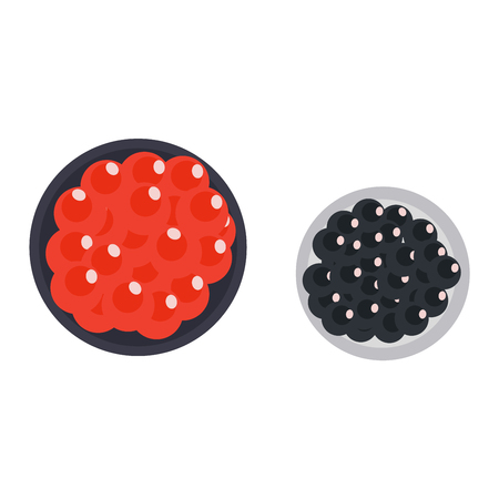 Red and black caviar appetizer fish gourmet seafood. Meal salmon snack healthy caviar delicious expensive roe. Salty ingredient breakfast caviar restaurant cuisine sea lunch vector illustration.