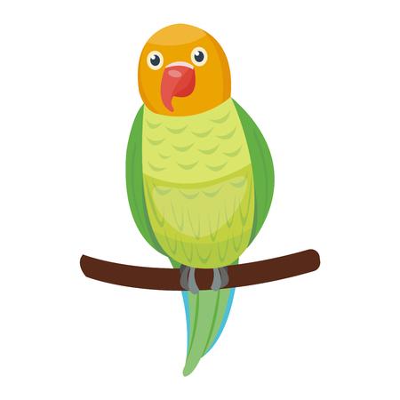 macaw: Cartoon parrot wild animal bird. Tropical parrot feather zoo bird, tropical fauna macaw flying ara. Cartoon exotic bird vector illustration.