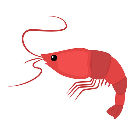 Roasted tails of shrimps dish protein nutrition. Cooked meal fresh gourmet healthy shrimp prawn shellfish vector. Crustacean cuisine appetizer snack shrimp delicious dinner ingredient. Illustration