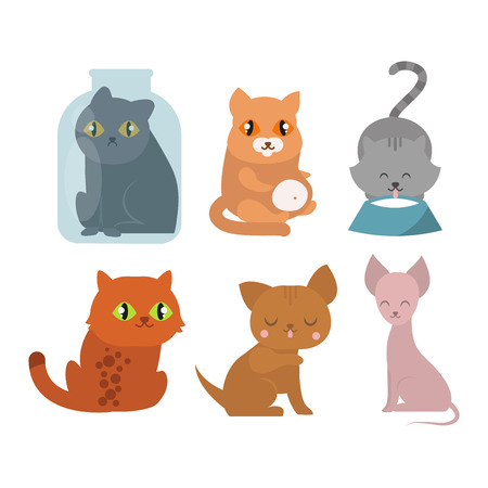 playful: Cats collection vector silhouette. Cute domestic cats different animals. Different cats young adorable tail symbol playful paw. Cartoon funny standing drawing domestic pussy characters set.