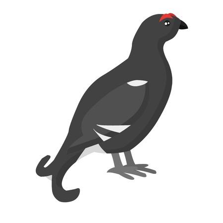 kuropatwa: French partridge game bird pheasant family, partridge flying bird. Fowl red-legged pheasant habitat grouse. Wild pheasant pheasant, red-legged partridge nature bird animal fauna striped cock vector.
