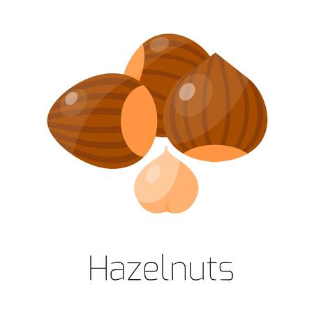 mixed nuts: Heap from various kinds of nuts. Pile of nuts almond, hazelnut, cashew, brazil nut isolated on white. Pile of nuts organic healthy seed ingredient and pile of nuts heap hazel nature nuts.