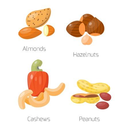 cashews: Piles of different nuts groundnut, hazelnut almond, peanuts, cashews Organic collection nutshell group different nuts. Different nuts assortment.