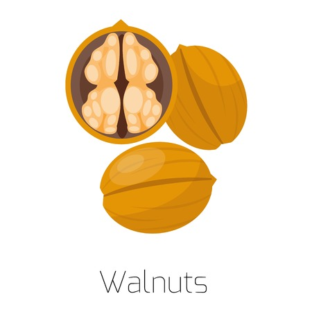 Heap of various kinds of nuts. Pile of nuts walnuts isolated on white. Pile of nuts organic healthy seed ingredient and pile of nuts heap nature nuts. Illustration