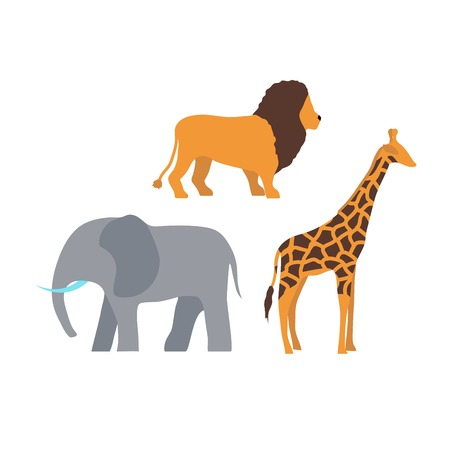 Wildlife mammal park lion, elephant and giraffe. Illustration of animals in wild africa nature white background. Tourism travel beautiful and dangerous zoo.