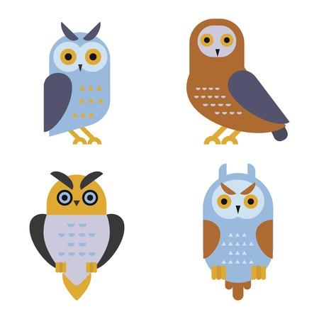Owl wild bird set and nature cartoon owl. Wildlife design cartoon character predator flying animal. Great horned Bubo virginianus subarcticus flat cartoon wild vector.
