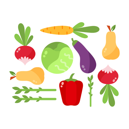 complementary: Vegetables food cellulose set. Cabbage, peppers, tomatoes, carrots, porridge cellulose isolated on white background. Healthy food concept.