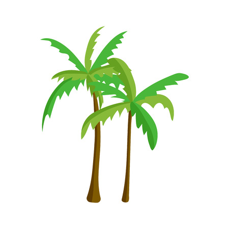 Palm tree isolated vector. Illustration