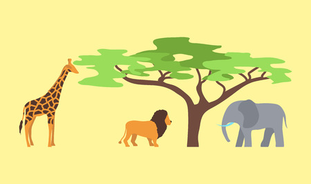 zoo dry: Baobab tree and wild animals isolated on white vector illustration.