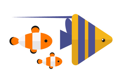 Reef clown fish or anemone vector illustration.