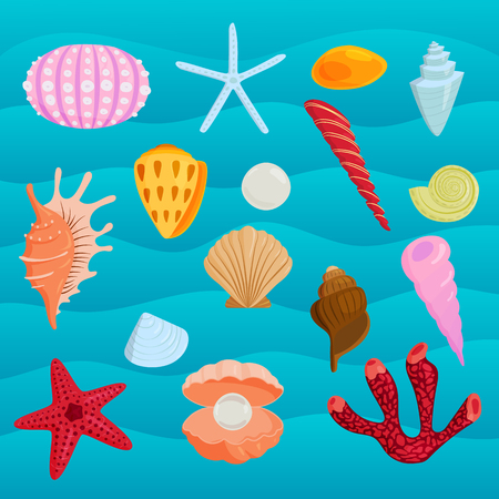 Sea marine animals and shells vector illustration.