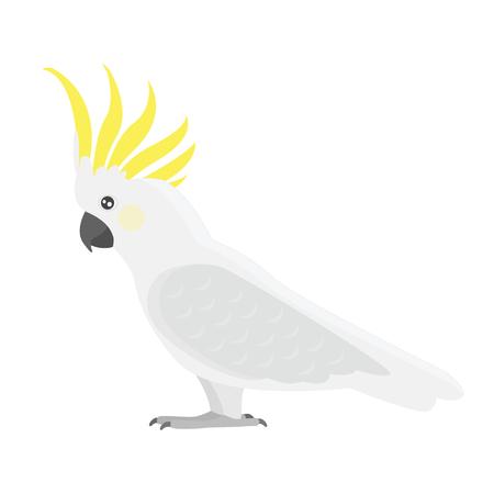 Cartoon tropische kaketoe papegaai wilde dieren vogel vectorillustratie. Vector Illustratie
