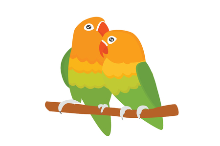 Cartoon tropical lovebird parrot wild animal bird vector illustration. Illustration