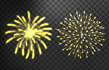 salute: Firework different shapes colorful festive vector.