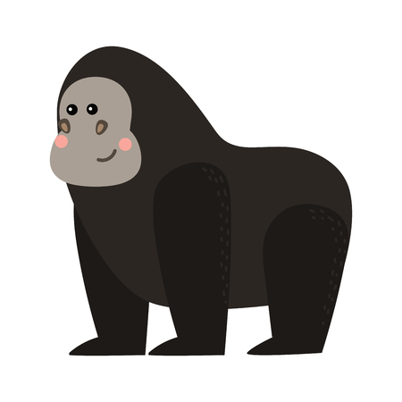 gorila: Gorila monkey rare animal vector. Stock Photo