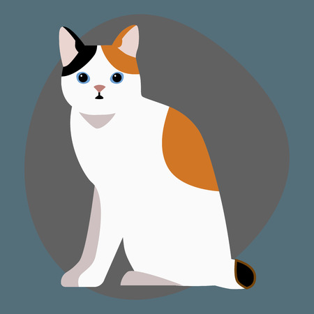 Cat breed cute pet portrait fluffy white black red adorable cartoon animal