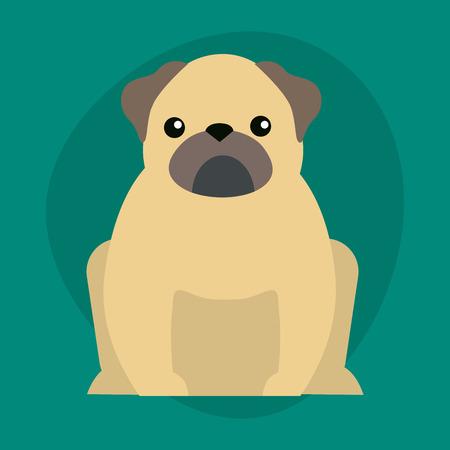 sheepdog: Funny cartoon dog character bread illustration in cartoon style happy puppy and bulldog isolated friendly mammal vector illustration.