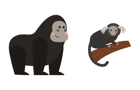 Different types of monkeys rare animal set. Illustration