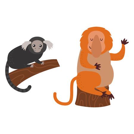 gorila: Different types of monkeys rare animal vector set.