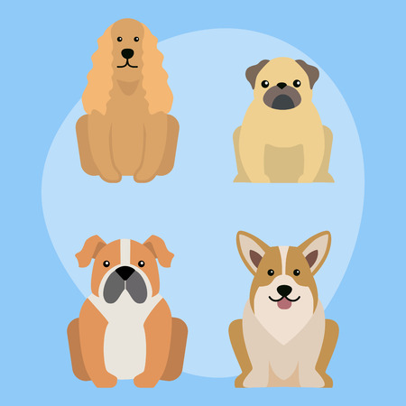 Funny cartoon dog character bread illustration in cartoon style happy puppy and isolated friendly mammal adorable mascot canine vector illustration.