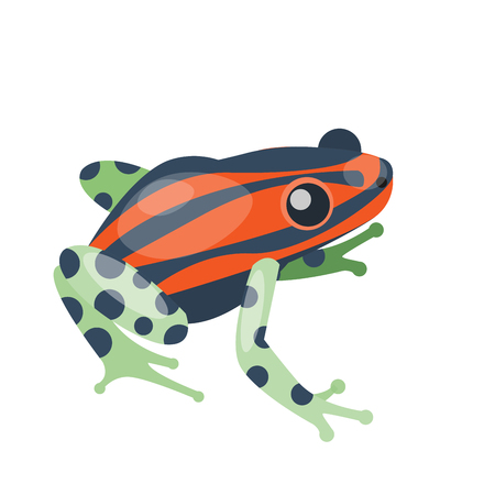 croaking: Frog cartoon tropical green red animal cartoon nature icon funny and isolated mascot. Illustration