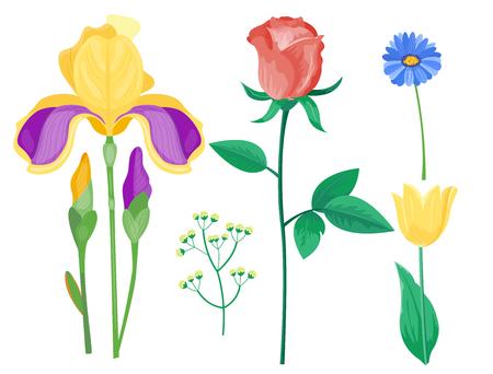 만화 꽃잎 빈티지 꽃 벡터 꽃다발 정원 꽃 식물 자연 peonies 일러스트 레이션
