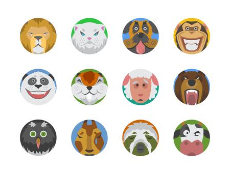 귀여운 동물, 감정, 아이콘, 격리, 재미, 얼굴, 행복한, 이모티콘, 만화, 귀여운, 애완 동물, 표현, 미소, 컬렉션, 야생, 아바타,