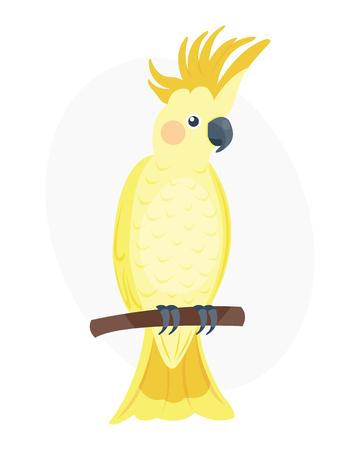 Cartoon tropical yellow parrot wild animal bird vector illustration wildlife feather zoo color nature vivid. Иллюстрация