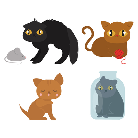 animal pussy: Cute cats character different pose funny animal domestic kitten vector illustration. Illustration
