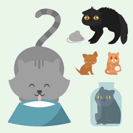 Cute cats character different pose funny animal domestic kitten vector illustration. Ilustração