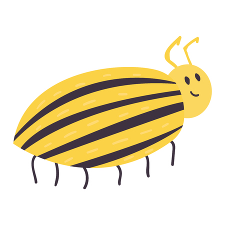 Colorful insect icon isolated wildlife wing hand drawn bug wild potato beetle vector illustration.