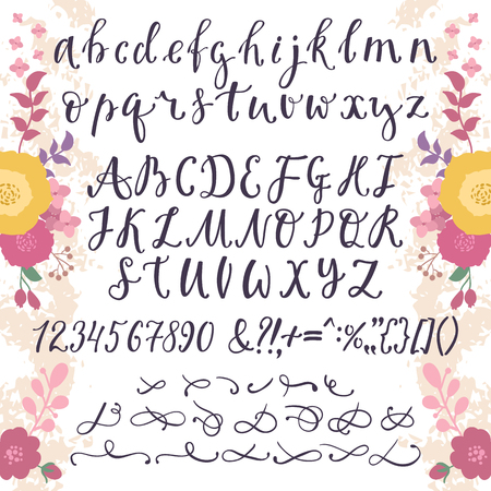 Calligraphic vector font with numbers ampersand and symbols flower hand drawn alphabet lettering Illustration