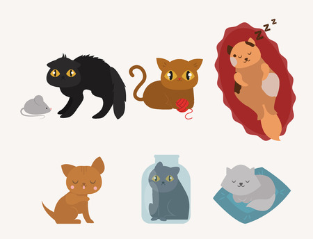 Leuke katten karakter verschillend poseren grappige dieren binnenlandse kitten vector illustratie.