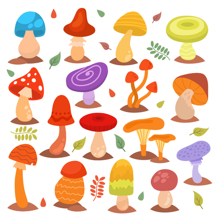 Different cartoon mushrooms isolated on white nature food design collection fungus plant vector illustration Illustration
