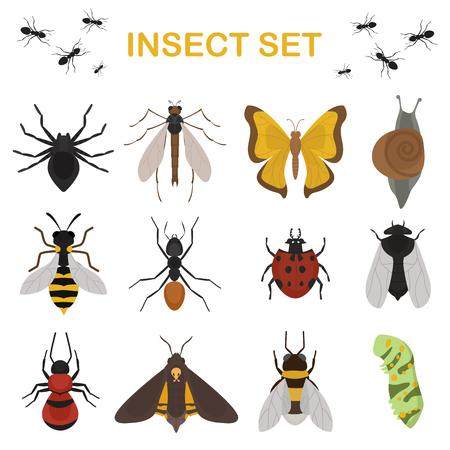 Muchy owady dzikie zwierzęta entomologia błąd zwierzęcy charakter beetle biologia buzz ikonę ilustracji wektorowych