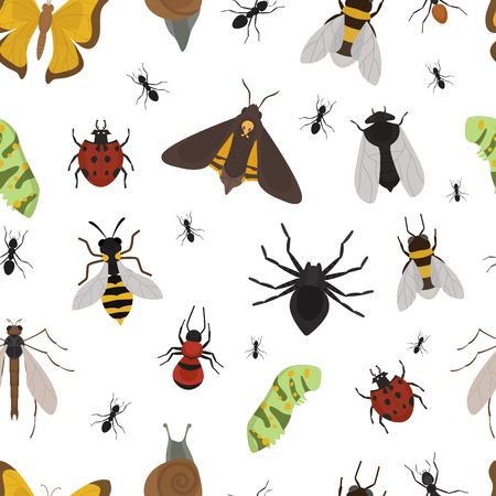 Fly insects wildlife entomology bug animal nature beetle biology buzz icon vector illustration pattern seamless background