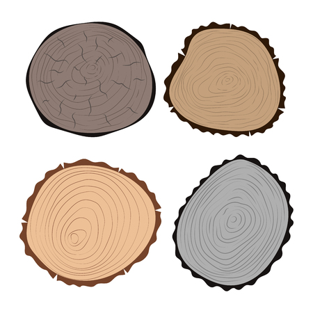 Wood slice texture tree circle cut raw material set detail plant years history textured rough forest vector illustration. Banco de Imagens - 81338135