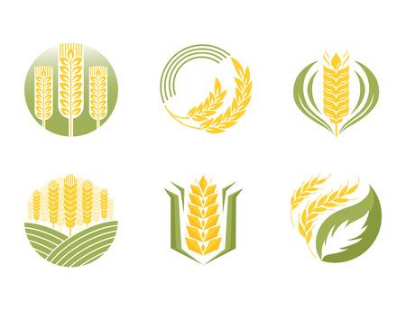 穀物の耳と穀物の農業業界やロゴ バッジ デザイン ベクトル図有機天然小麦アイコン健康パン農業ラベル農業秋食品に設定。
