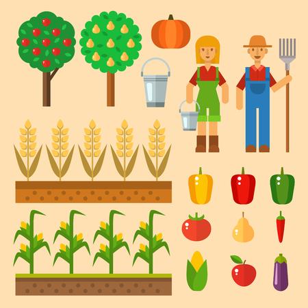 農業および園芸の健康的な自然な果物のための機器を収穫するファームをベクトルし、ハンドツール  イラスト・ベクター素材