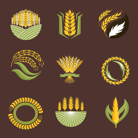 Cereal ears and grains agriculture industry or logo badge design vector food illustration organic natural symbol.