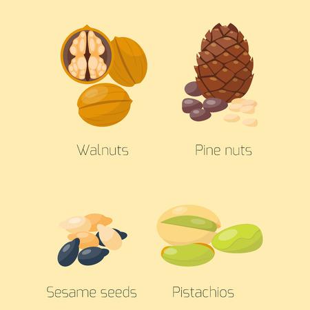 Stapels van verschillende van de de okkernoot smakelijke zaad van het noten pistache smakelijke vegetarische de voedings vectorillustratie