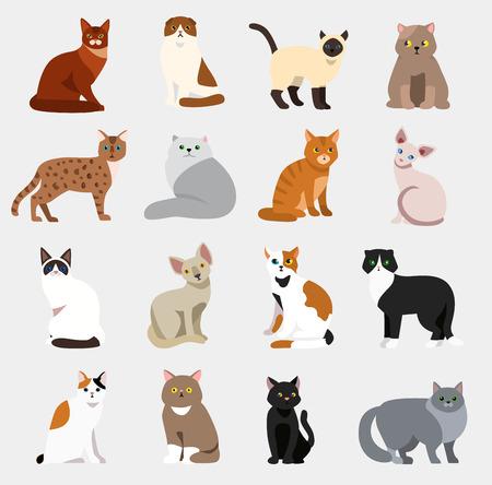 고양이 품종 귀여운 애완 동물 동물 세트 벡터 그림 동물 아이콘 만화 다른 고양이