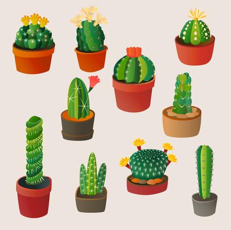 귀여운 만화 선인장 집 식물 자연 벡터 일러스트 멕시코 여름