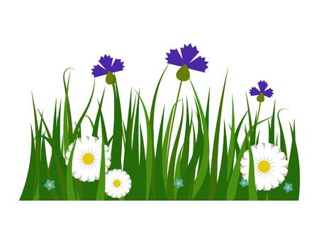 green grass herbe herbe herbe herbe nature herbe jardinage jardinage illustration vectorielle