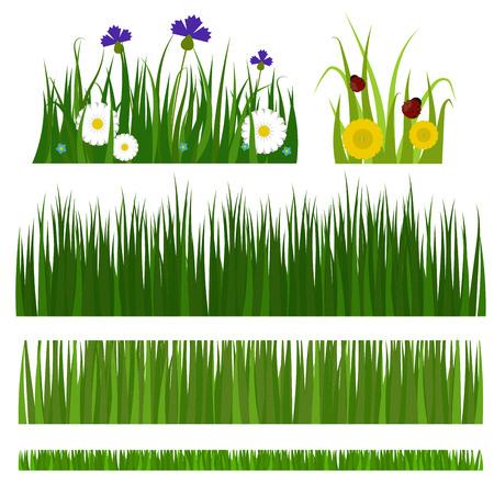 Green grass border plant lawn nature meadow ecology summer gardening vector illustration 版權商用圖片 - 83312793