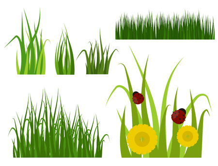 Green grass border plant lawn nature meadow ecology summer gardening vector illustration 版權商用圖片 - 83312872
