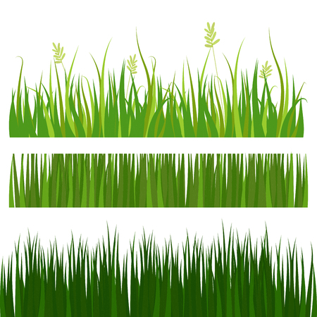 Green grass border plant lawn nature meadow ecology summer gardening. Illustration