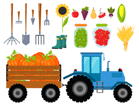 Vector harvest flat icons harvesting equipment for agriculture and horticulture, healthy natural fruits and hand tools