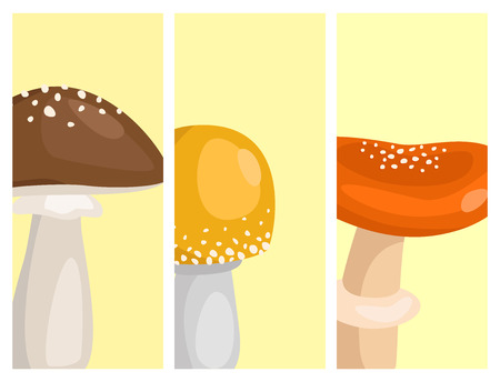 Amanita fly agaric toadstool cards mushrooms fungus different art style design vector illustration red hat Ilustração